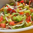 Picnic Marinated Summer Slaw - This easy-to-prepare slaw recipe is a little different from the rest. A tangy vinaigrette dressing is simmered and poured over cabbage, cucumbers, and tomatoes for a refreshing slaw that is perfect for picnics.