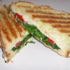 Turkey Avocado Panini - A panini sandwich with avocado mayonnaise is layered with smoked turkey, roasted red peppers, and provolone cheese, and pressed until the sandwich is crisp and toasted and the filling is melted.