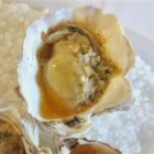 Oyster Recipes