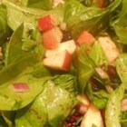 Thanksgiving Spinach Salad - Spinach, apples, and dried cranberries are tossed in a sweet and spicy dressing for a festive salad perfect for Thanksgiving dinner.