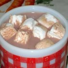 Chocolate Lover's Hot Chocolate - This sweet and creamy hot chocolate has just a hint of maple syrup.