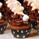 Chocolate Fudge Cupcakes - Rich chocolate cupcakes with a fudge-like consistency.