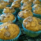 Light Pumpkin Chocolate Chip Muffins - Canned pumpkin puree and chocolate chips mingle with cinnamon in this muffin recipe.