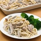 Terrific Turkey Tetrazzini - Leftover turkey gets a boost in this tetrazzini variation--turkey in a creamy mushroom sauce is mixed with cooked spaghetti, topped with Parmesan cheese, and baked until golden and bubbly.