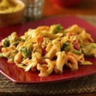 Mexican Mac 'n Cheese - Give traditional Mac and Cheese a Mexican twist! This easy recipe is delicious and comes to the table in 30 minutes.