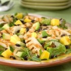 Spicy Southwest Chicken Salad - Slices of spicy grilled chicken and onion are the crowning touch on this complete-meal salad with black beans, chunks of avocado, and mango on fresh salad greens.