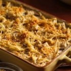 Tetrazzini - Enjoy hearty chicken and spaghetti tetrazzini for dinner--baked using Progresso™ Recipe Starters™ creamy portabella mushroom cooking sauce.