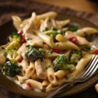 Roasted Garlic Chicken Penne - This quick and easy pasta dish is the perfect weeknight meal. Chicken and broccoli add to the flavorful and satisfying sauce.