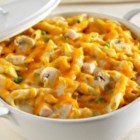 Turkey Tetrazzini with Cheddar and Parmesan - An easy turkey dish with a creamy mushroom sauce layered with pasta and cheese. Parmesan and Cheddar cheeses contain a small amount of lactose, making this recipe a friendly option for those who are lactose intolerant.