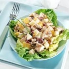 Mango-Curry Chicken Salad - A tasty combination of grilled chicken, diced mangos, sweet cranberries and crunchy walnuts all spiced with curry on top of a bed of lettuce.  Made with nutrient-rich, fat-free yogurt, and try reduced-fat Mozzarella cheese. The cheese does contain a small amount of lactose, and the live and active cultures in yogurt help digest lactose, making this recipe a friendly option for those who are lactose intolerant.