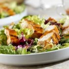 Tomato Asian Chicken Salad - A bed of salad greens is topped with chicken grilled and basted with an Asian-inspired sauce. Soy sauce, vinegar, ginger and garlic give this grilled chicken its character. Additional sauce is served as a salad dressing.