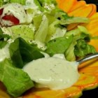The Last Caesar Salad Recipe You'll Ever Need - This is a classic creamy Caesar salad dressing that's perfect for a salad or for dipping vegetables. To serve, toss with chopped romaine in a salad bowl and shave Parmesan cheese on top of salad; season with salt, black pepper, and a squeeze of fresh lemon juice.