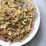 Thai Peanut Curry Noodles