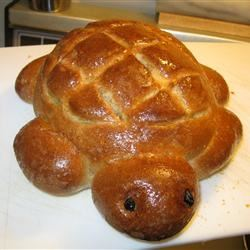 Turtle Bread Jo