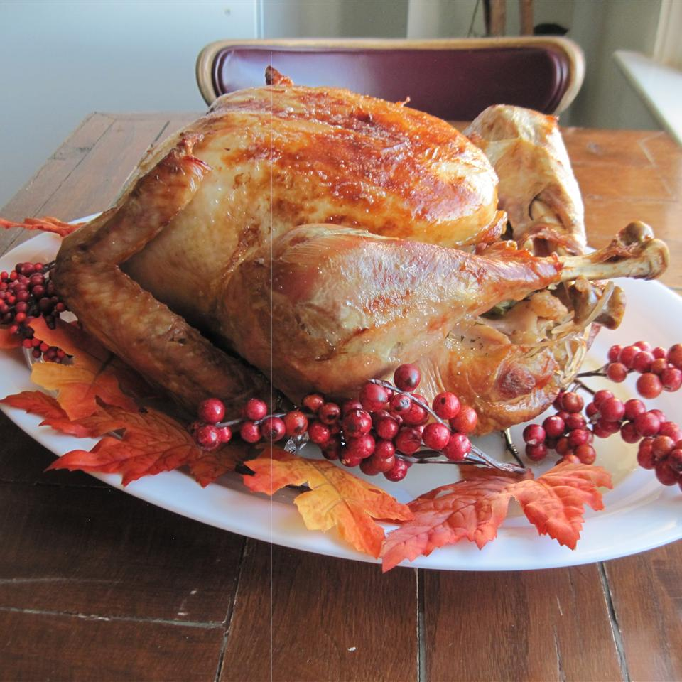 Perfect Turkey image