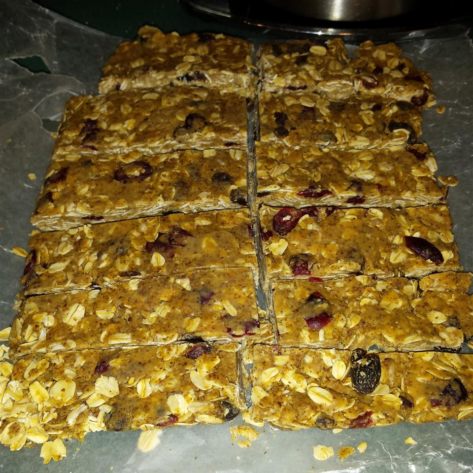 No-Bake Protein Bars amp