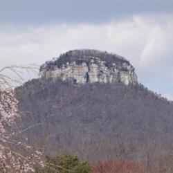 Spring on Mt. Pilot