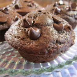 Moist Chocolate Muffins Recipe