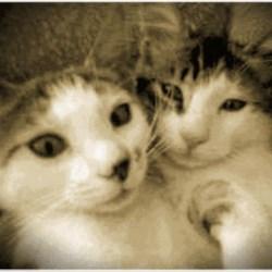 Sebastian & Toby