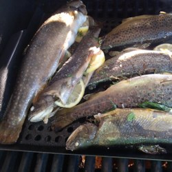 Whole Grilled Trout Recipe