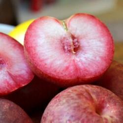 Delicious Pluot Fruit!