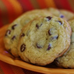 Chocolate Chip Coffee Cookies Recipe
