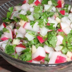 Christmas (Red, White and Green) Salsa