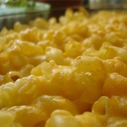 Four Cheese Macaroni