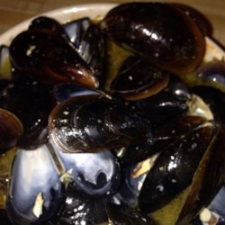 Million Dollar Mussels Recipe