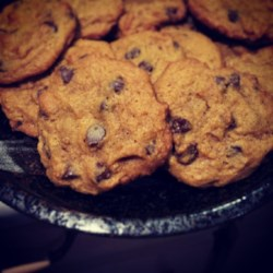 Egg Free Chocolate Chip Pumpkin Cookies Recipe