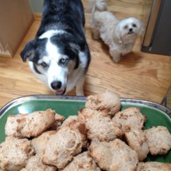 Brie's Banana and Honey Dog Treats Recipe