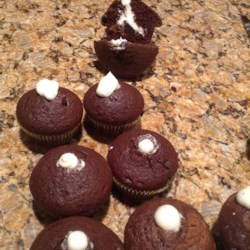 Cream Filled Chocolate Cupcakes