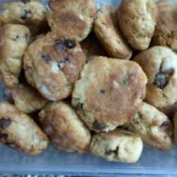 No Cholesterol Chocolate Chip Recipe