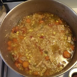 Zippy and Tangy Turkey Rice Soup Recipe
