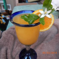 Vodka Slush Recipe