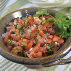 LittleBitFae's Fresh Tomato Salsa Recipe