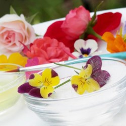 Candied Flowers Recipe