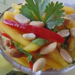 Easy Mango Salad Recipe