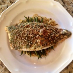 Pecan-Crusted Trout Recipe