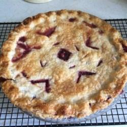 Saskatoon Pie