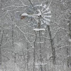 Windmill at the Farm