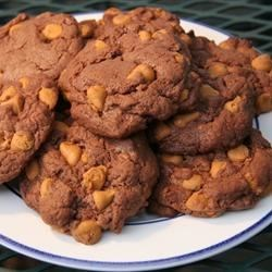 Easy Chocolate Butterscotch Cookies