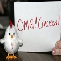OMG Chicken!1!