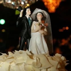 Our wedding cake topper
