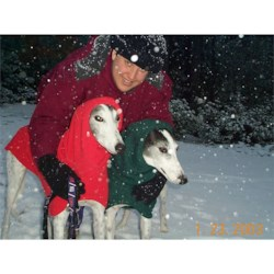 Deanne with Tuffy and Niko, my greyhounds