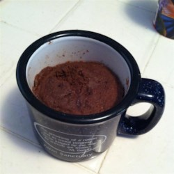 Best Mug Cake (Paleo) Recipe