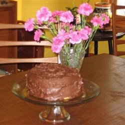 Homemade Yellow Cake with Chocolate Frosting