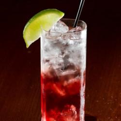 Vodka drinks recipes allrecipes the shaner bill recipe the shaner bill as this cocktail is named sisterspd