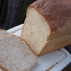 Photo of Traditional Whole Wheat Bread by Carol  Forcum