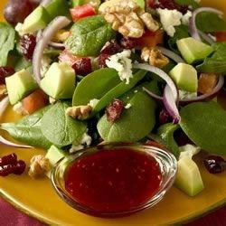 harvest salad photos